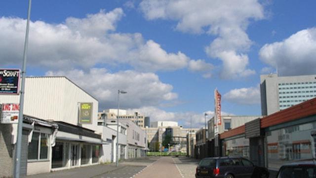 Nieuw Amsterdamlaan 19