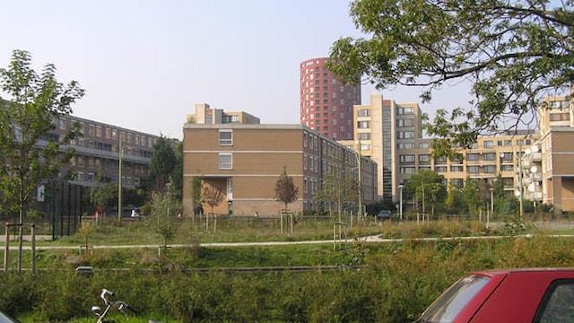 Overkant - Hogeschool