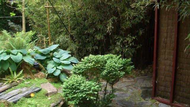Tuin, Japanse stijl