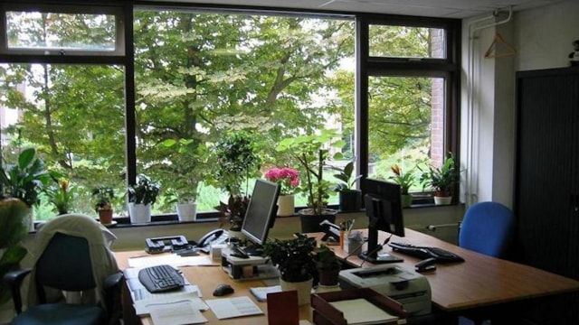SGZ kantoor 2 voorzijde