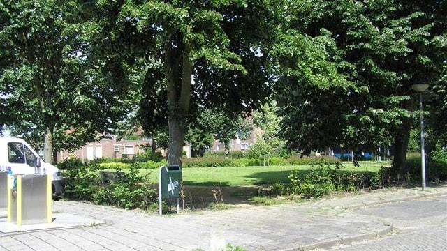 Omgeving / park