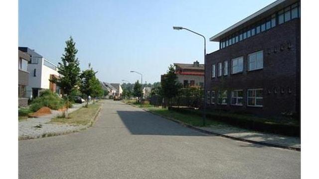 Straatbeeld Rijen