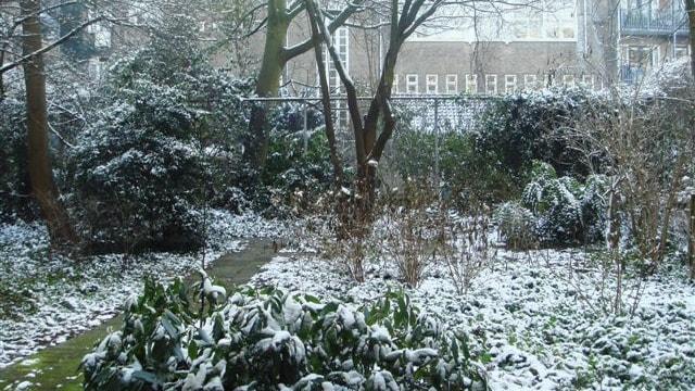 Cornelis Krusemanstraat 23-hs