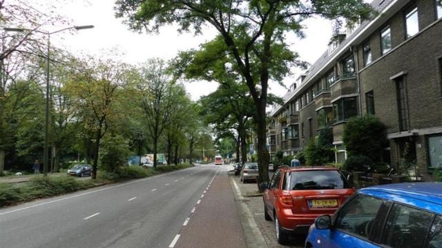 Straat links