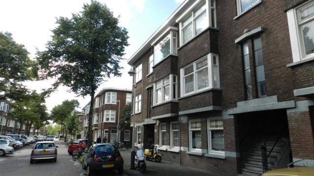 Linnaeusstraat 263