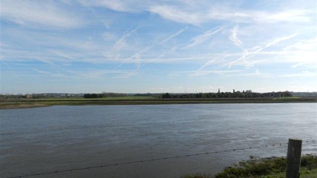 Beeld vanaf overzijde Maas (België)