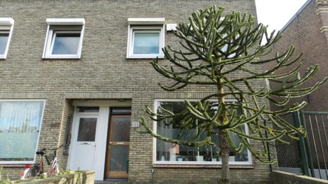 Nijmegen Beleggingspand