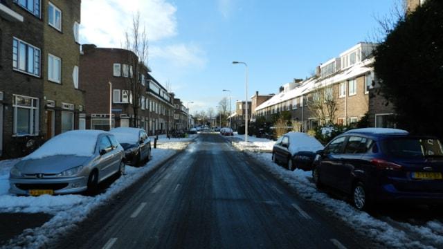 Pieter Nieuwlandstraat 60