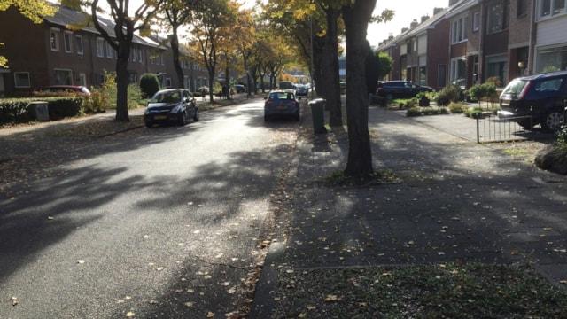 Désiré Leesensstraat 25
